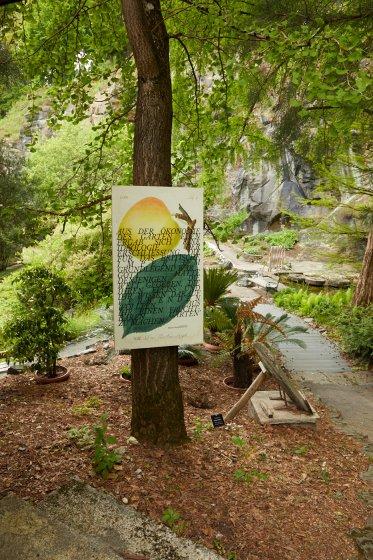 Naturlehrpfad Landraub von Ines Doujak im Botanischen Garten Klagenfurt im Rahmen der Veranstaltung INS FREIE 2019